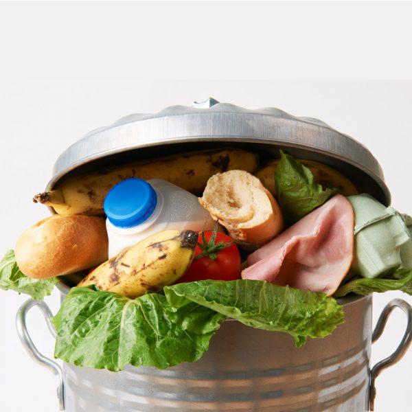 Food Waste-01